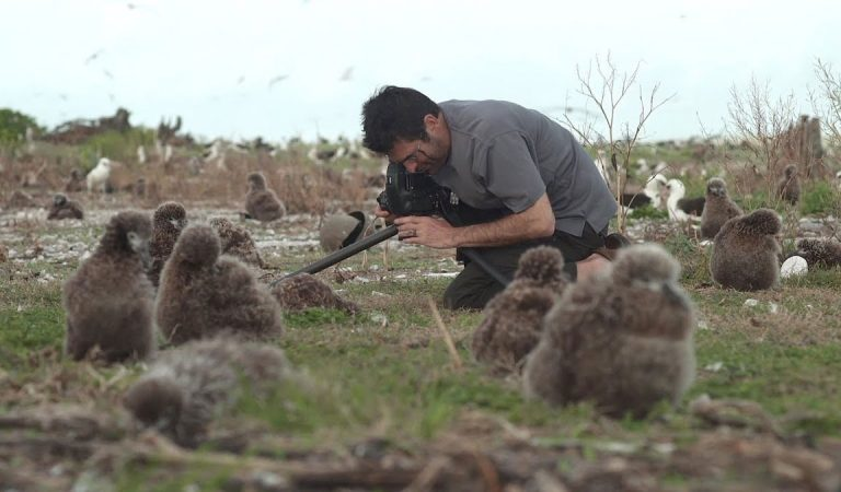 Environmental Crisis In Spotlight At This New Film Festival In Abu Dhabi