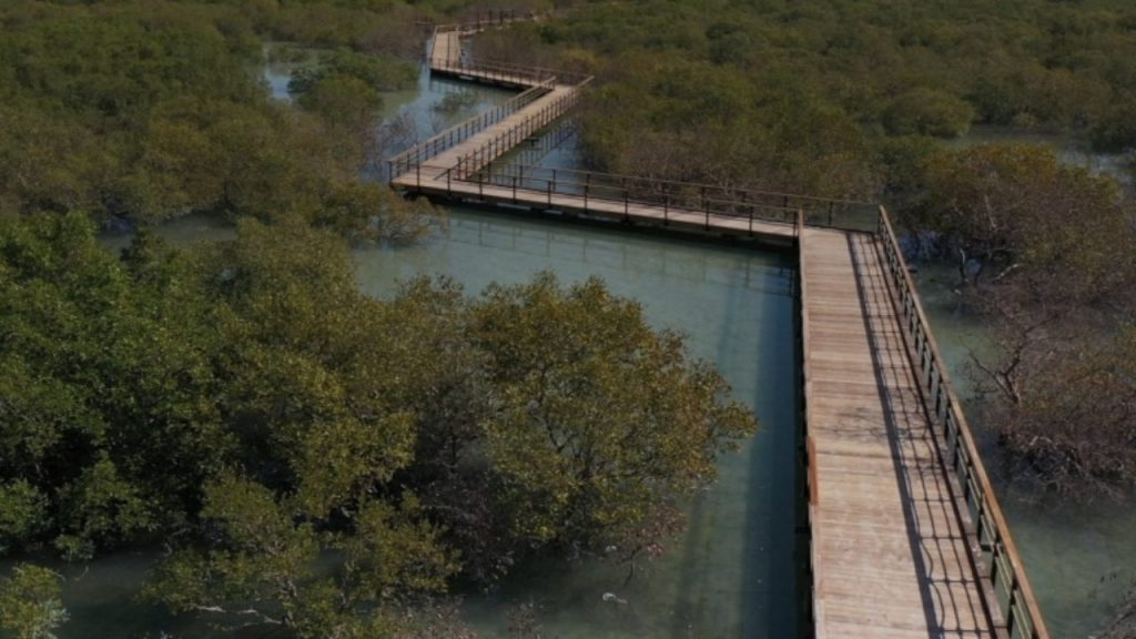 Residents & Tourist To Enjoy the long walk At Mangrove Walk Project