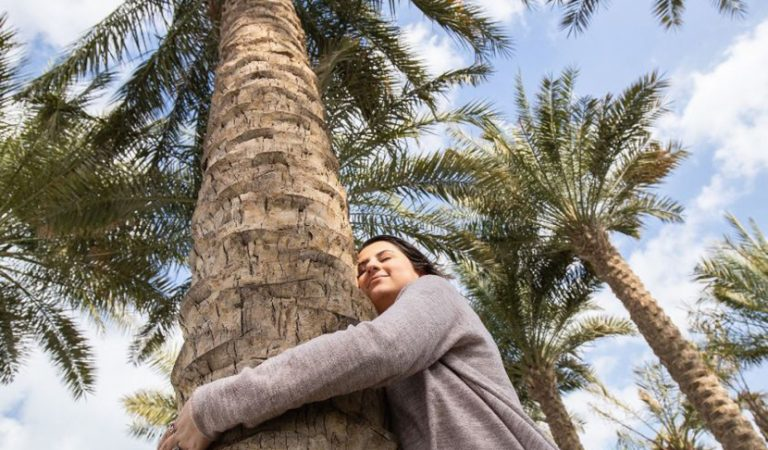 Want To Hug A Tree? Louvre Abu Dhabi Will Let You Spread The Love This Month