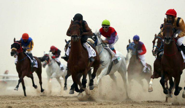 Al Dhafra Festival: The Greatest Showcase Of Bedouin Lifestyle