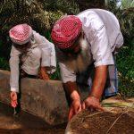 Aflag irrigation system in Al Ain