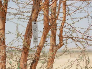 Environment Agency - Abu Dhabi